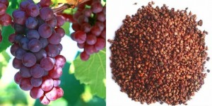 Grape Seed Extract for cancer