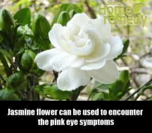 Jasmine for pink eye